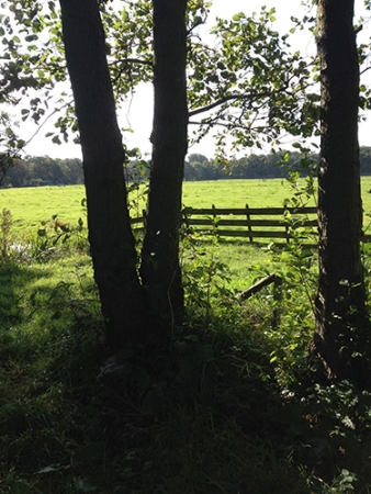 wandeling 08.10.2015 6